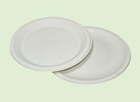 Plato Large de plastico biodegradable en Cali Colombia