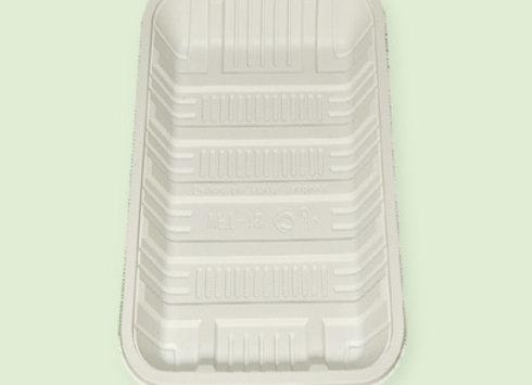 Bandeja large de plastico biodegradable en Cali Colombia