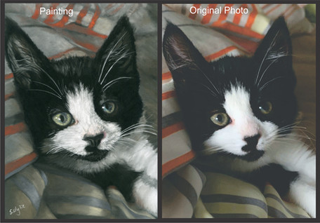 Commissioned pastel painting of a little black and white kitten.