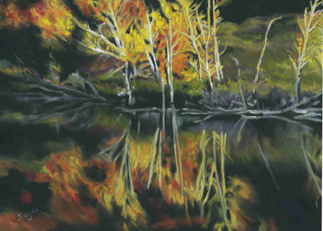 """""""Commonage Fall Reflection""""  (sold)"""
