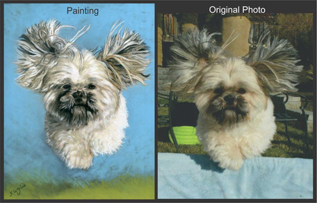 Commissioned pastel painting of a little dog jumping through the air.
