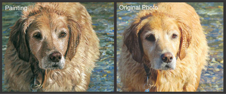 Commissioned pastel painting of a golden retriever in water.