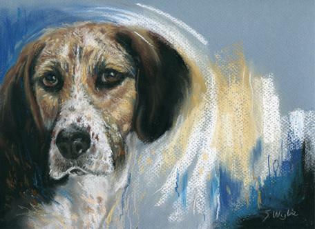 Hound dog pet painting