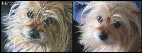 Terrier dog custom pet portrait