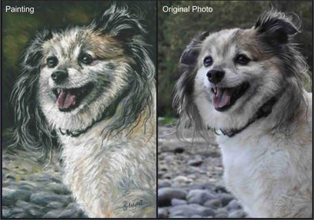Papillon Terrier dog commissioned pet portrait