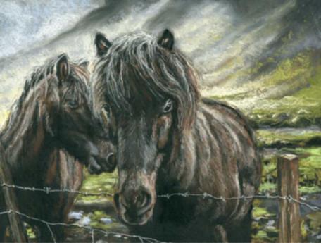 Custom brown horses portrait.