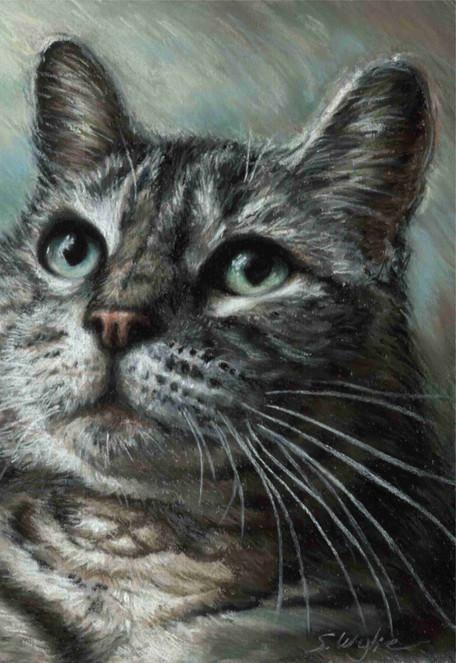Custom green eyed tabby cat portrait.