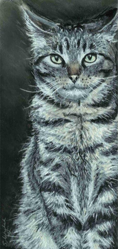 Custom tabby cat portrait.