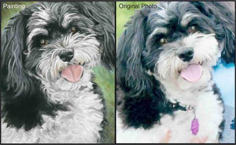 Cute black and white dog custom pet painting
