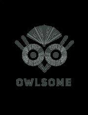 Owlsome_logo_hi-res_no_borders(已去底).jpg