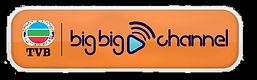 TVB_BigBig-Channel_2(已去底).jpg