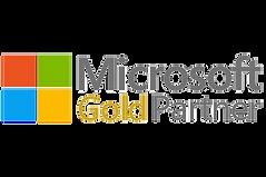 MS-gold-partner-logo.png