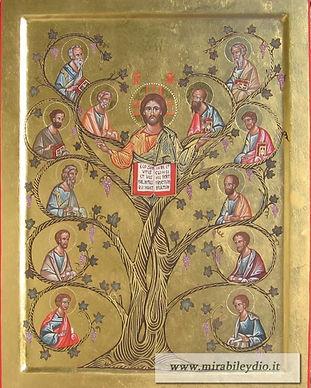 Cristo vite ,sui Suoi tralci gli Apostoli.