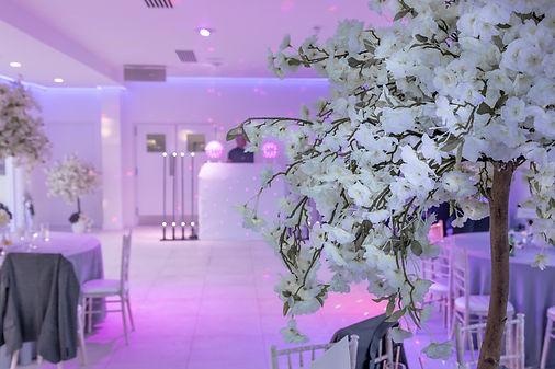 Arley House & Gardens wedding DJ
