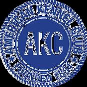 AKC-Logo-seo-sm-1.png