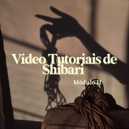 Tutorial de Shibari   Módulo II