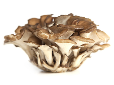 THE FIVE MEDICINAL MUSHROOMS REVOLUTION:ENHANCE IMMUNITY, FIGHT FATIGUE AND FIND INNER PEACE