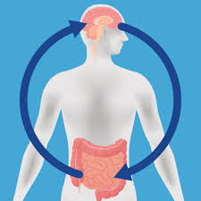 HEALING THE GUT TO BOOST BRAIN FUNCTION: HERBS, DIET AND SUPPLEMENTS FOR A HEALTHY NERVOUS SYSTEM