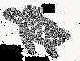 Logo maque engagee ethique nature protection des oceans