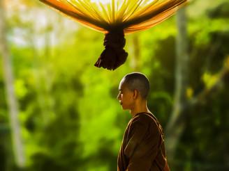 誤將痛苦執為快樂而墮入無邊惡性錯亂,本想和平安樂反而離得更遠