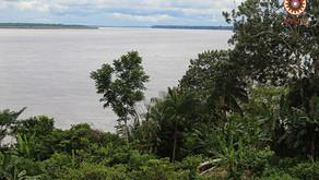 Memoria Amazónica