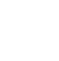 satellite-icon-white.png