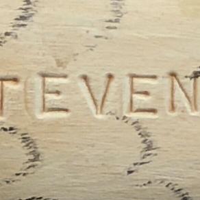 Stevens branded shorebirds?