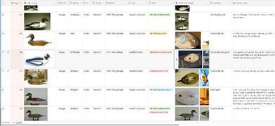 Stevens decoys database