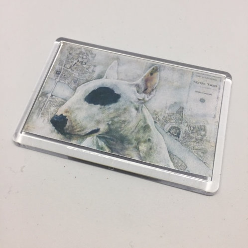 Oliver - Bullseye Fridge Magnet