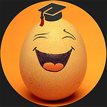 LOGO School of Improv Egg circle 6x6