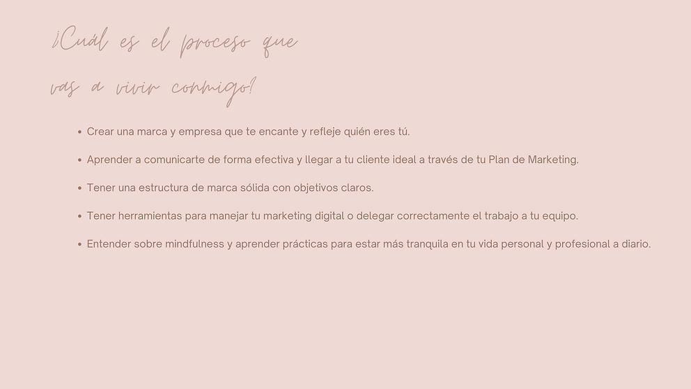 Pink and Brown Simple Handwritten Portfolio Presentation (13).png