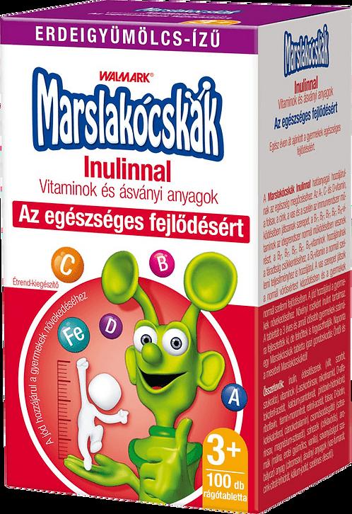 Marslakócskák Inulinnal erdei gyümölcs ízű 30db