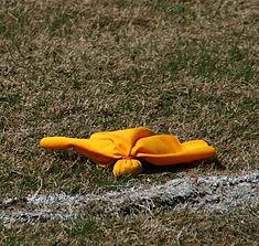 Men's lacrosse officials in North Carolina