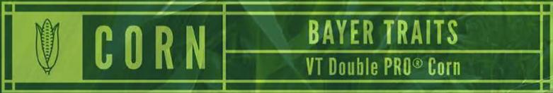 VT2P RIB Header.png