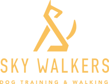 Sky_Walker_logo_yellow2_edited.png