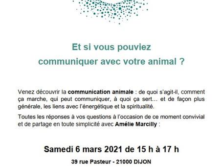 Découverte de la Communication Animale à Dijon le 6 mars 2021