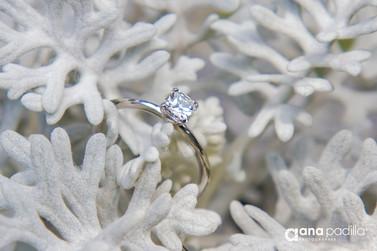 anillo comp-2.jpg