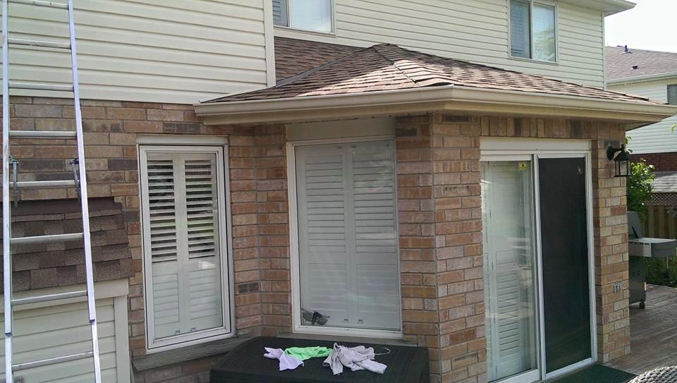 back yard windows.jpg