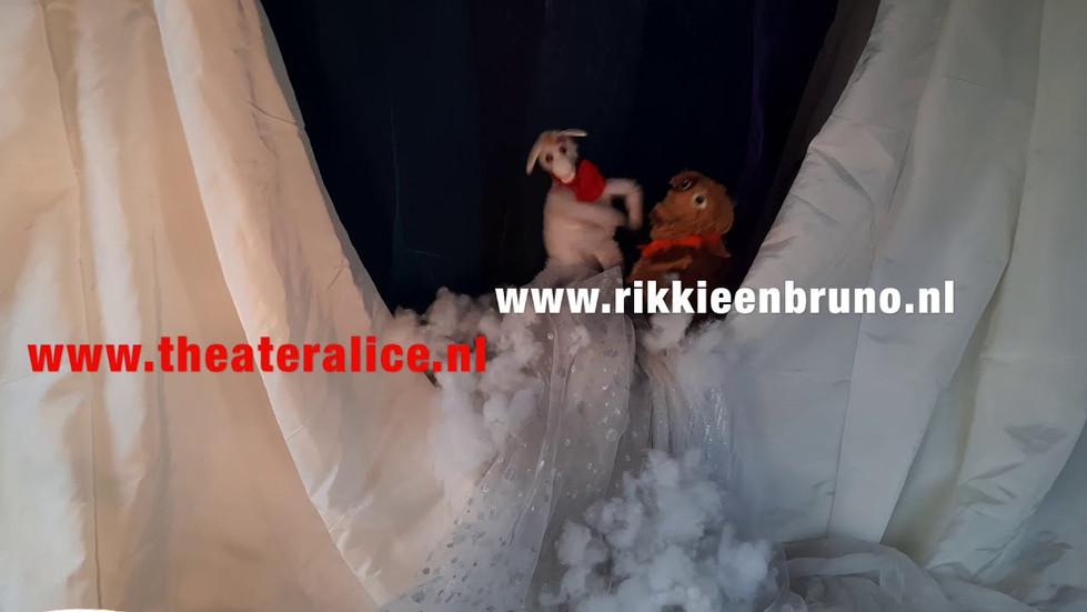 Rikkie en Bruno redden de Noordpool