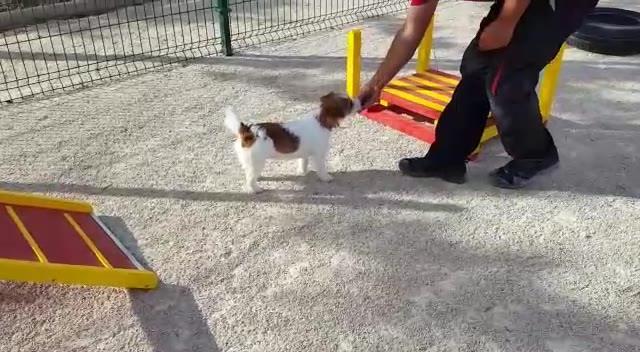 TRUST Resort Canino, Spanien