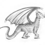 «Dragon»
