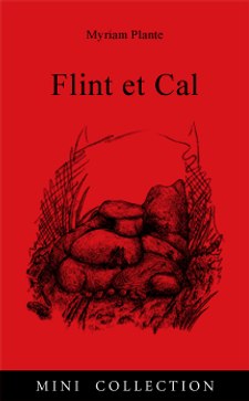 Couverture FlintCal v2.png