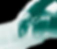 AccuReg GMP, GCP & ISO Audits, FDA Regulatory & Compliance Consulting