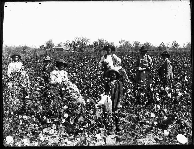 slaves-in-fields.jpg