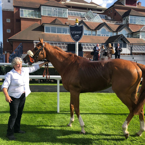 Windsorlot wins at Newbury....
