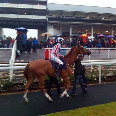 Our first run at Chepstow
