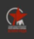 Логотип_серый фон_печать.png