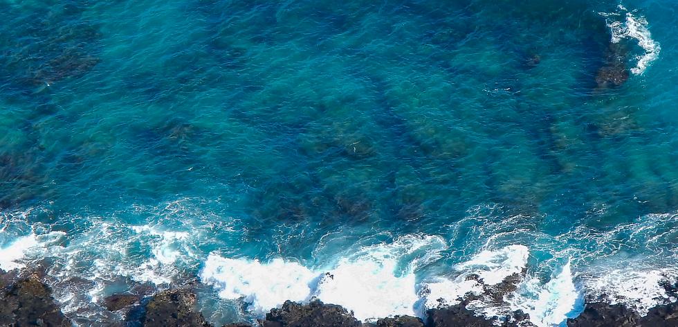 Copy of ocean.png