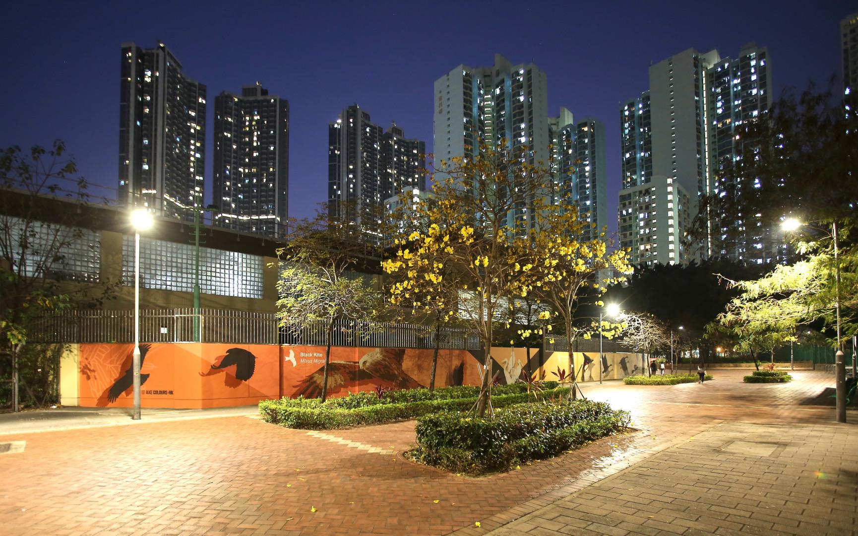 AXE COLOURS HK Birds