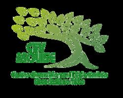 Logo  CSV - definito